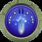 11 Clusters of DNAja vu