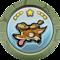 Fleet Foxer